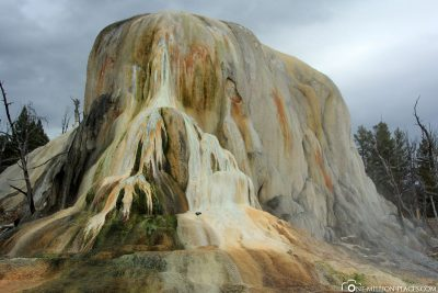 The Mammoth Hot Springs