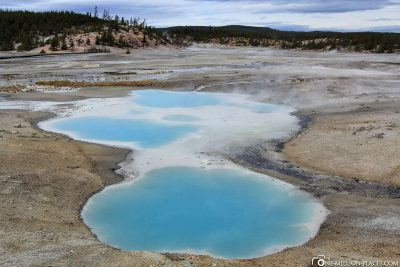 The Norris Geyser Bassin