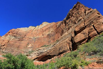 The Weeping Rock Trail