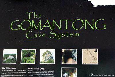 Die Gomantong-Höhlen auf Borneo
