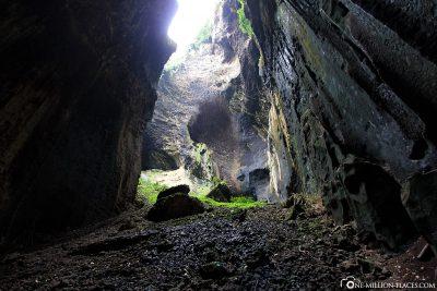 The Gomantong Caves on Borneo
