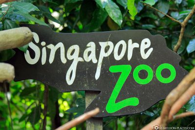 Der Zoo in Singapur