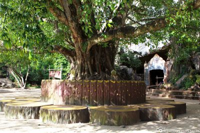 The grounds of the Monkey Temple