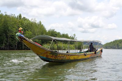 The excursion boats