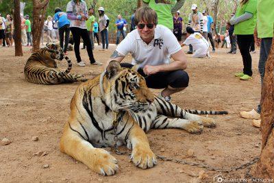 Der Tigertempel