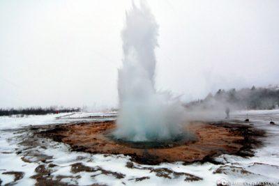 The Geyser Strokkur with Fountain
