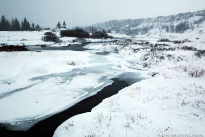 Der Thingvellir Nationalpark