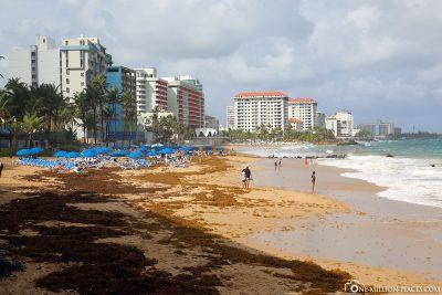 Die Playa Concha