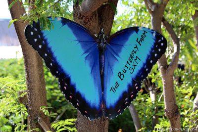Die Butterfly Farm in St. Maarten
