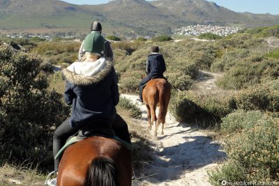 The ride to Noordhoek Beach