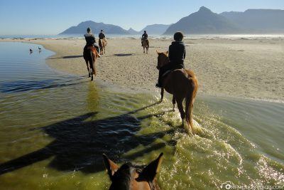 Reiten durchs Wasser