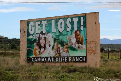 Search Web Results Cango Wildlife Ranch and Conservation Centre