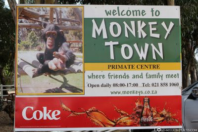 The Monkey Town in Somerset West