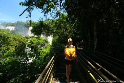 Der Lower Trail