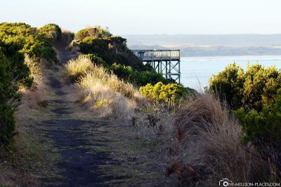 Der Wanderweg entlang der Küste