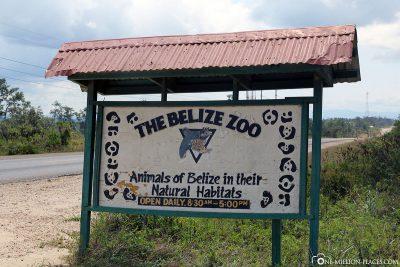 Der Eingang zum Zoo