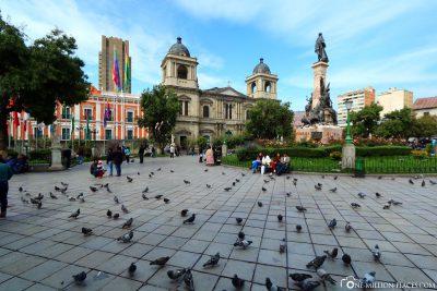 The Plaza Murillo