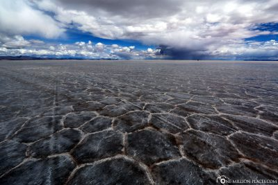 Hexagonal patterns in the dried-up salt lake