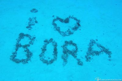 Schnorcheln in Bora Bora