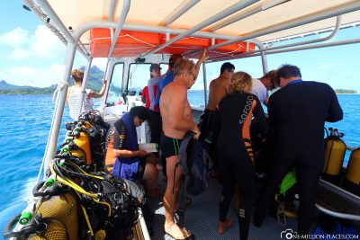 The dive boat of Topdive