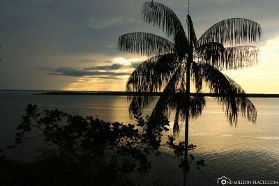 Evening atmosphere on the Amazon