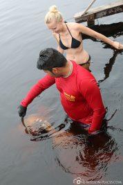 Boto Delfin