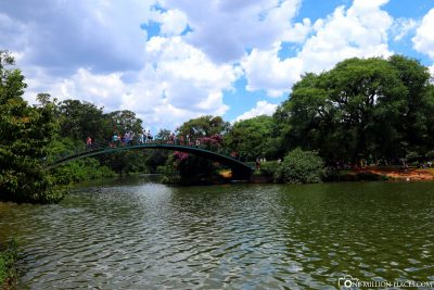 The City Park of Sao Paulo