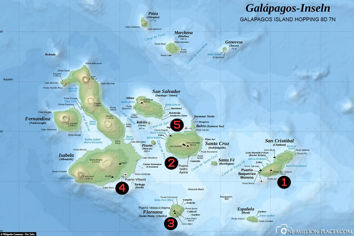 8 Days Galapagos Island Hopping, Galapagos, Ecuador, Tour, Wildlife, Travelreport