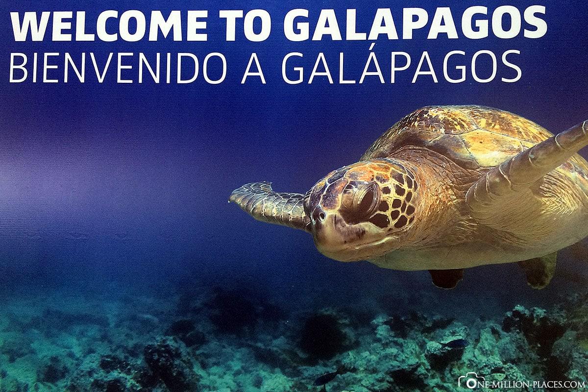 Island of San Christobal, Galapagos, Ecuador, Round Trip, Wildlife, Travelreport