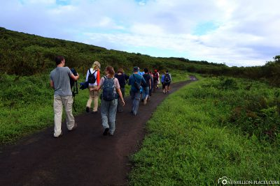 The trail to the crater