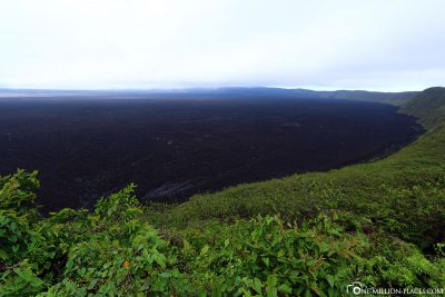 The Sierra Negra Volcanic Crater