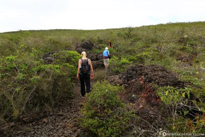 The way to the crater rim