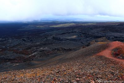 Overview of the volcanic landscape