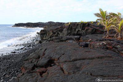 Der Black Beach auf Big Island