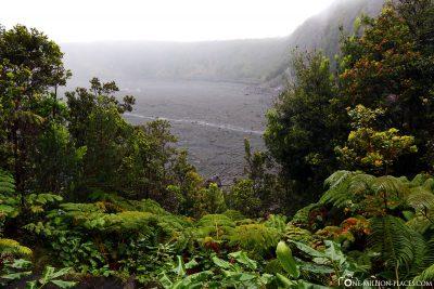 View of Kilauea Iki Crater