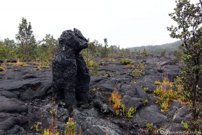 Cat figure from lava