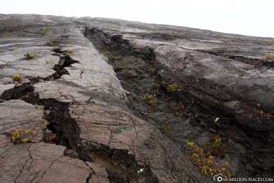 The lava flows of 1973 and 1974