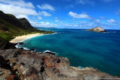 The view from the Makapuu Lookout
