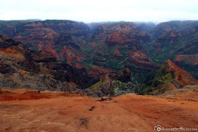 The view of the canyon