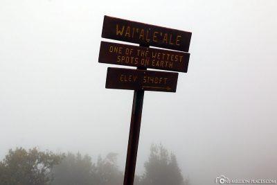 Der Berg Wai'Ale'Ale