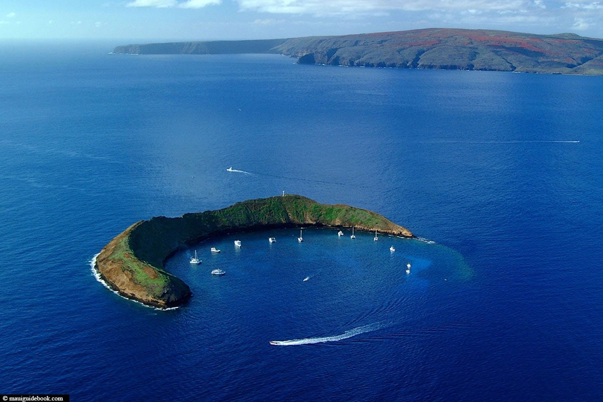 Molokini Island, Diving, Maui, Hawaii, USA, Diving Report, Travel Report