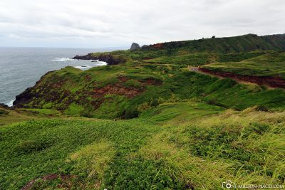 The coastal road 340 in Maui