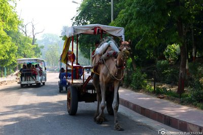 Carriages on the way to the Taj Mahal