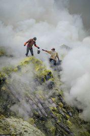 The degradation of sulphur