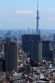 Blick auf den Tokyo Skytree