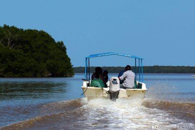 Bootfahrt in der Lagune von Celestun