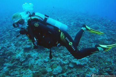Diving in Moorea