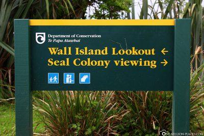 Die Seelöwenkolonie am Cape Foulwind