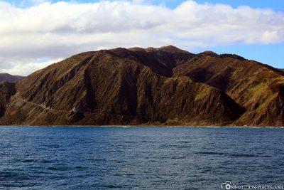 Die Küste der Nordinsel von Neuseeland