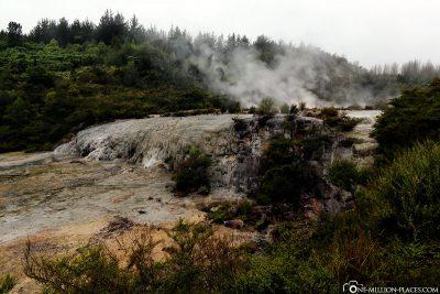 The Geothermal Region